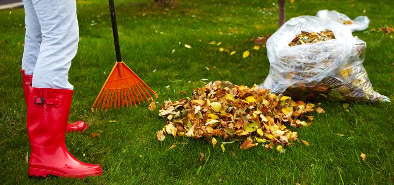 como limpiar cesped artificial de hojas
